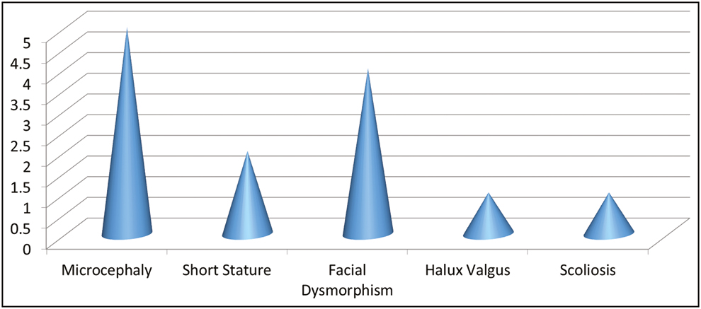 Figure 3: Dysmorphic features. X-axis indicates clinical features. Y-axis indicates number of patients